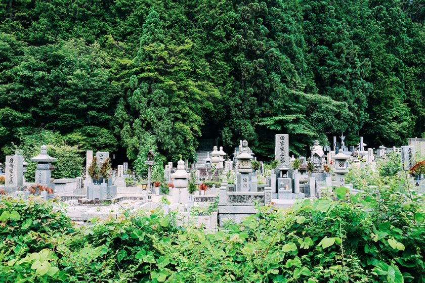 forest graveyard