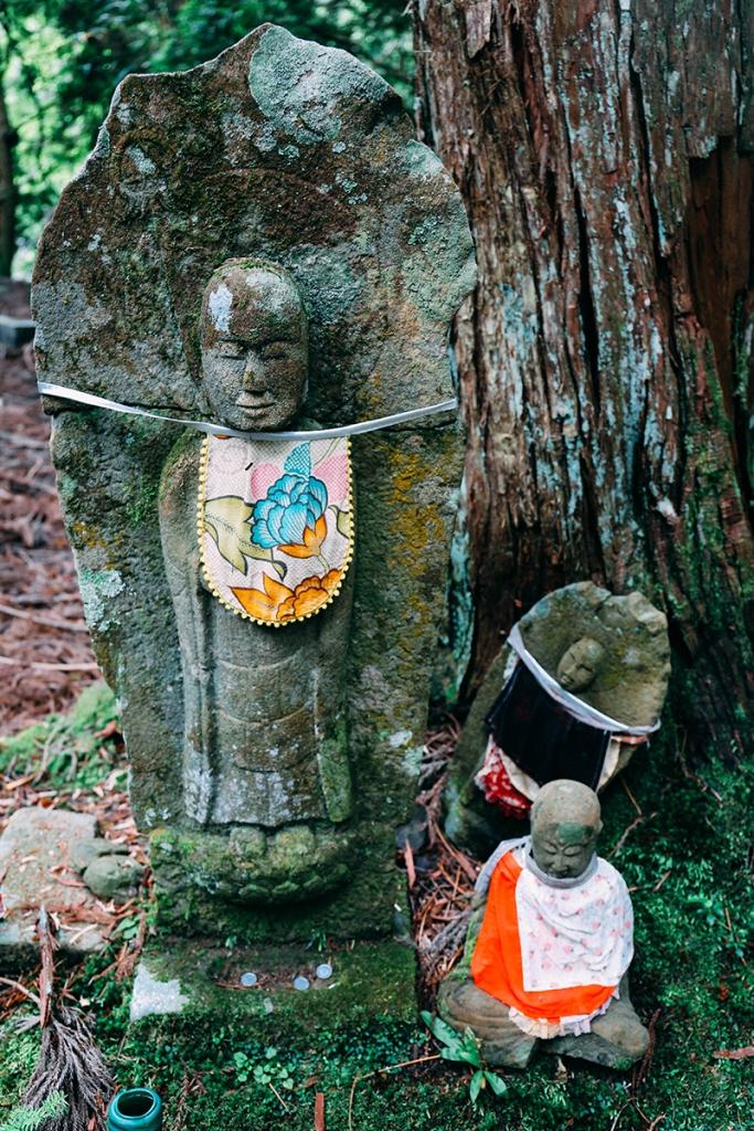 buddha colour