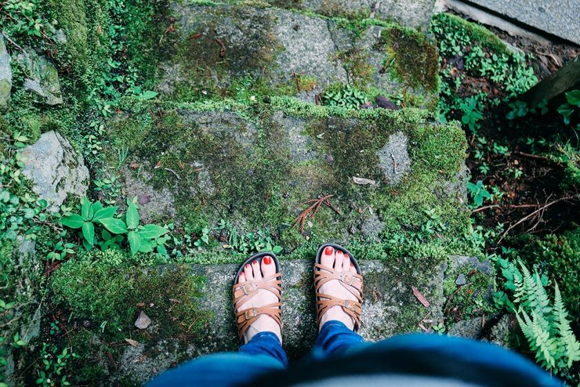 moss feet