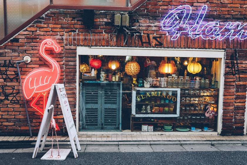 Shimokita Tokyo flamingo vintage store