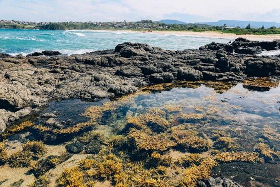 Kiama Coast 27