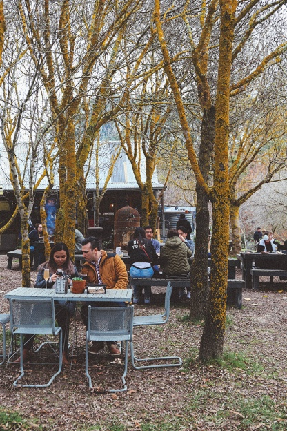 Daylesford Lavandular Lavendar Farm cafe