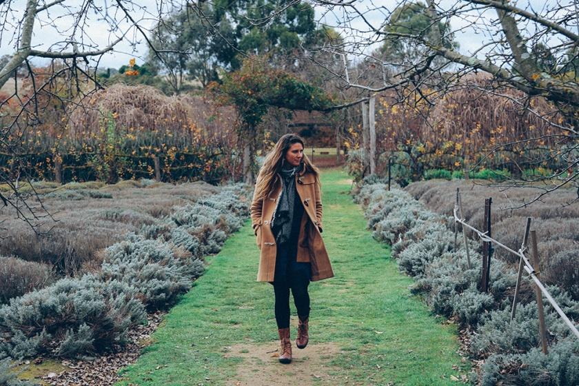 Daylesford Lavandular Lavendar Farm Katie May weekend away
