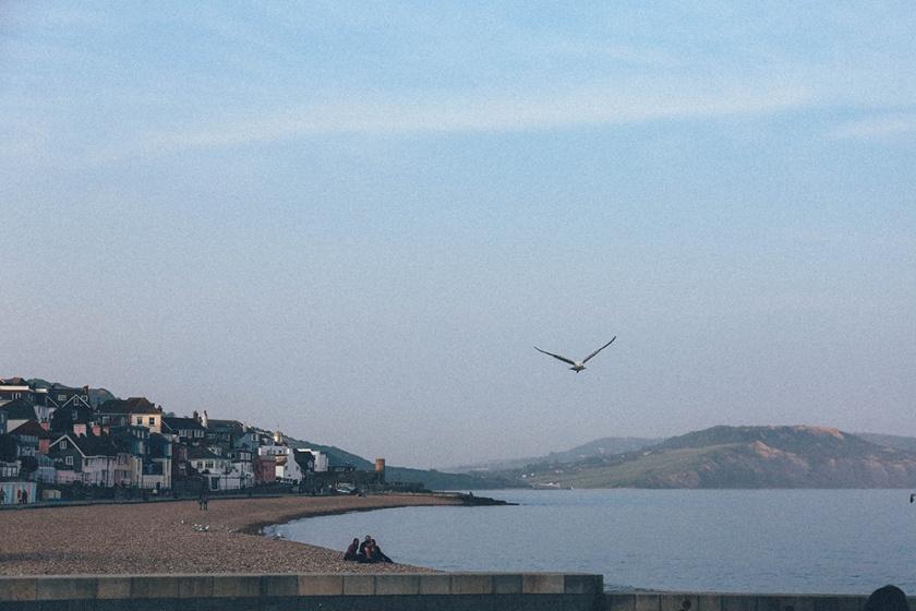 Lyme Regis beach 3