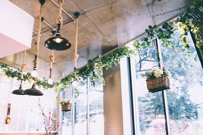 Sydney Best Cafe Cuppa Flowers ceiling plants