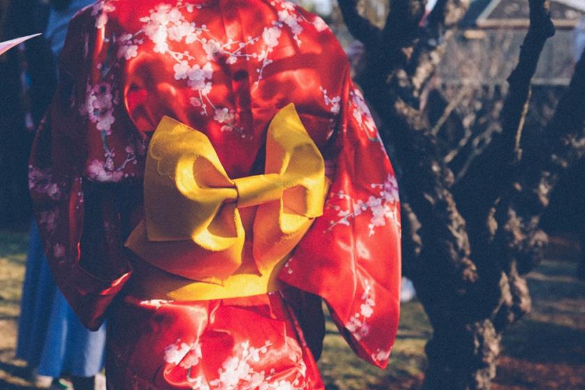 Cherry Blossom Festival Auburn Sydney bow