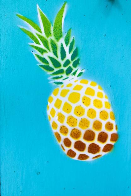 Tigerlilys Nusa Lembongan pineapple motif