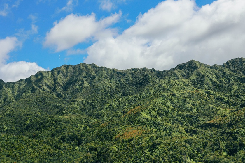 Helicopter tour Hawaii Kauai Sunshine napali coast waimea