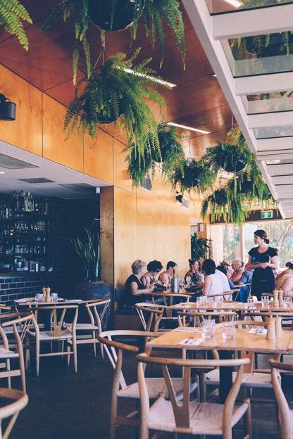 Sydney best ferry trips palm beach ettalong box on the water restaurant