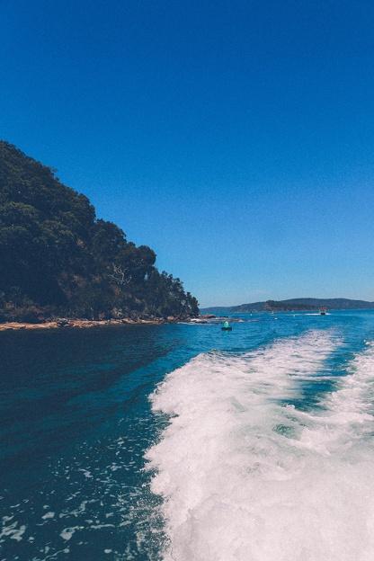 Sydney best ferry trips palm beach ettalong trip