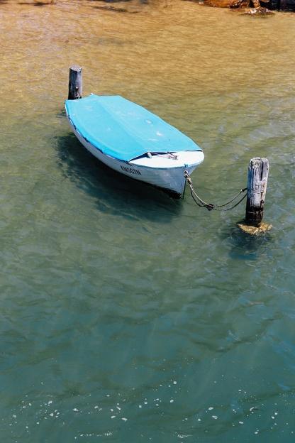 Sydney best ferry trips palm beach ettalong wagstaff boat