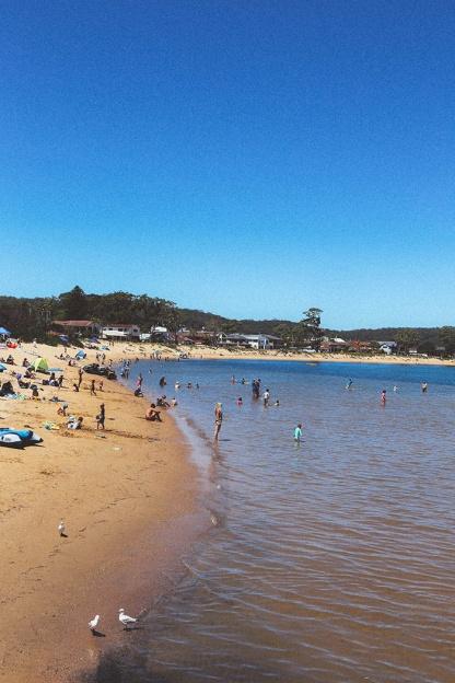 Sydney best ferry trips palm beach ettalong waterfront