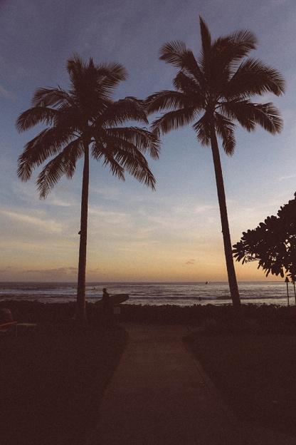 Kauai Hawaii Poipu Beach palm beach surfer