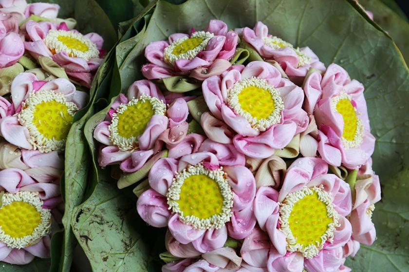 Bangkok thailand flower markets_