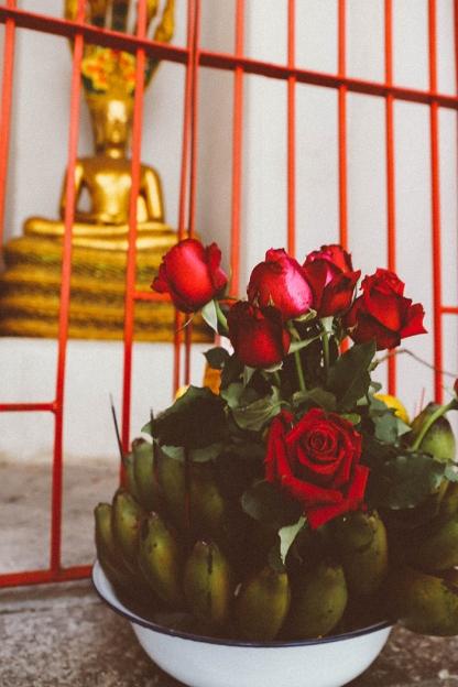 Bangkok wat arun thailand temple roses